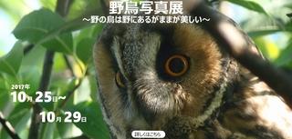 DSC07087_murakami940x450-1.jpg