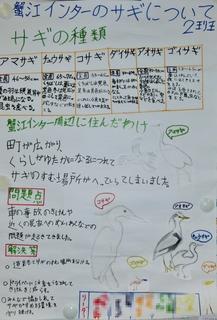 3回サギ2班-1.jpg