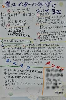 3回サギ3班-1.jpg