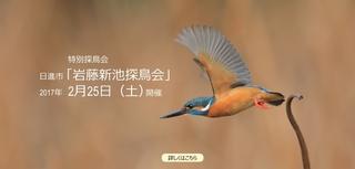 IMG_2566_nakamura940x450-2.jpg