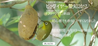 IMG_2867_nakamura940x450-3.jpg