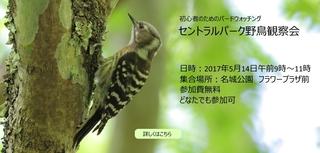 IMG_5594_nakamura940x450-1.jpg