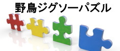 zigsopazzle_235x100.2020.5.17.jpg